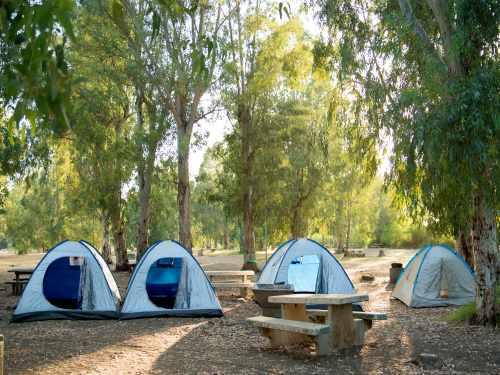 קמפינג (לינת אוהלים) בפארק הירדן, צילום רוני אלוש, מאי 2021 (86)
